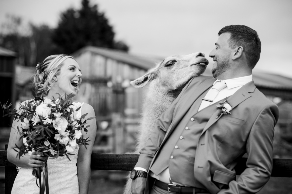 Skipbridge Farm wedding photography - wedding photographer Cheshire, North West